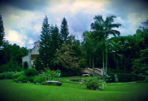 Wedding in Hill Creek Garden  Tagaytay